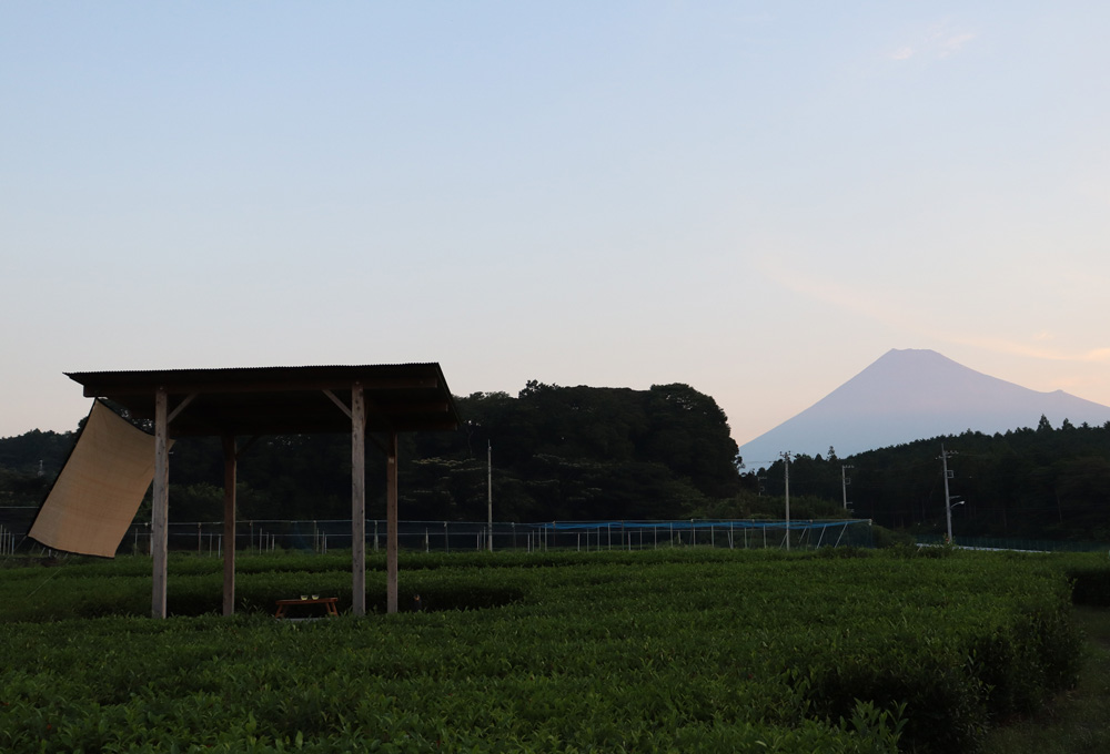 FUJISAN MARUMO CHAEN~Second part~