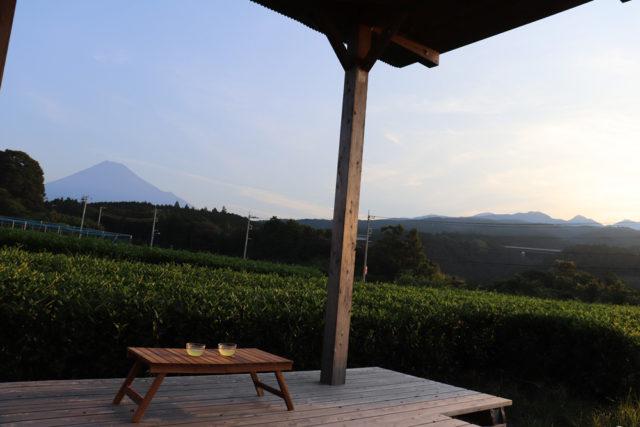 海と富士山を眺めながら茶樹の神秘に触れる「富士の茶の間」 【静岡県・富士市】