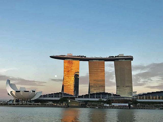 お茶の世界情勢知りたくてシンガポールでお茶屋巡りしてみた【シンガポール】